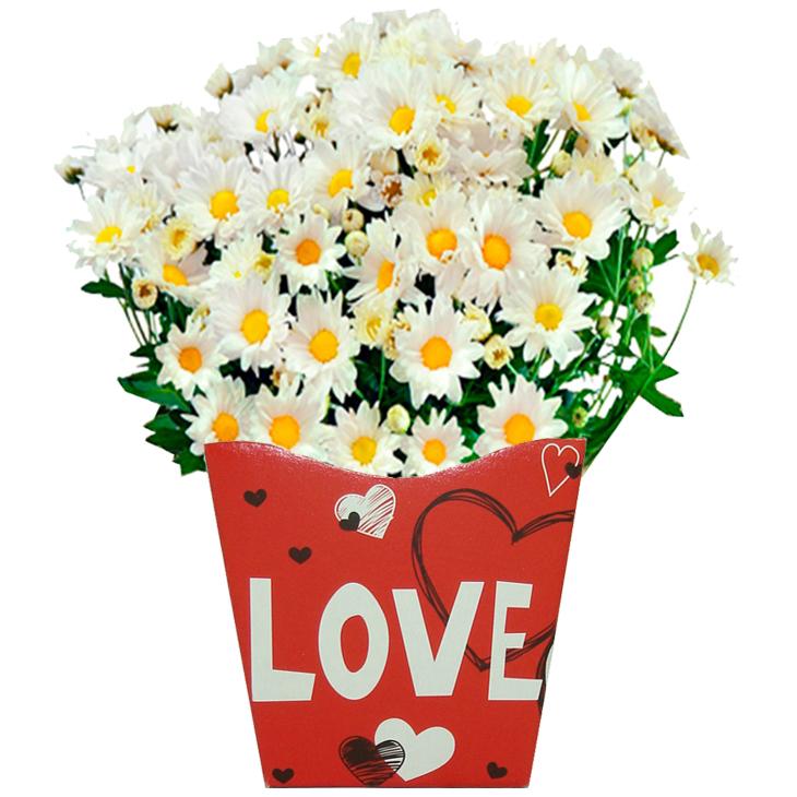 Margaridinha Love