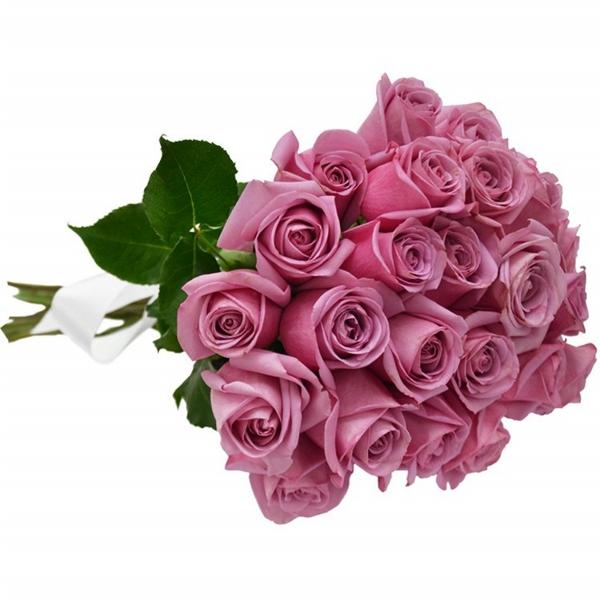 Buquê 24 Rosas Lilás