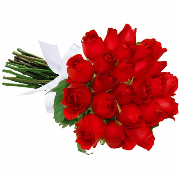 Buquê 24 Rosas Vermelhas