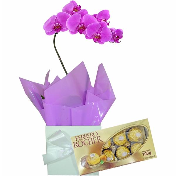 Orquídea Lilás com Bombons