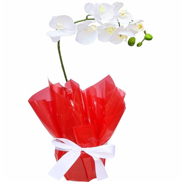 Orquídea Branca Romântica