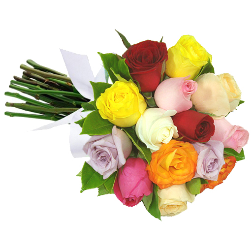 Buqu� 12 Rosas Coloridas