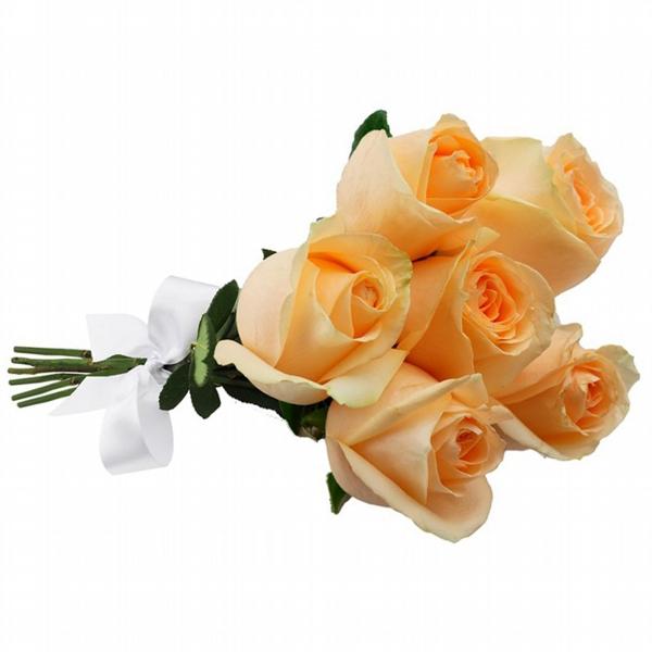 Buquê de 6 Rosas Champanhe