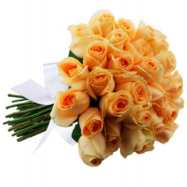 Buquê Perfeito com 36 Rosas Champanhe