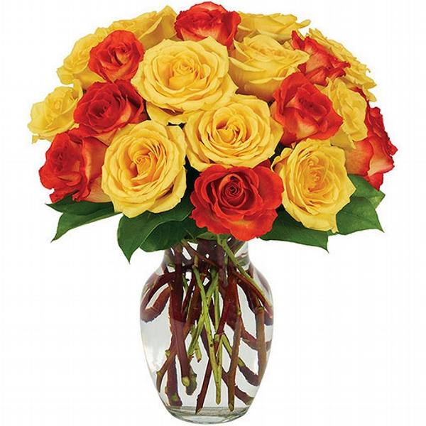 Buquê 20 rosas Radiance
