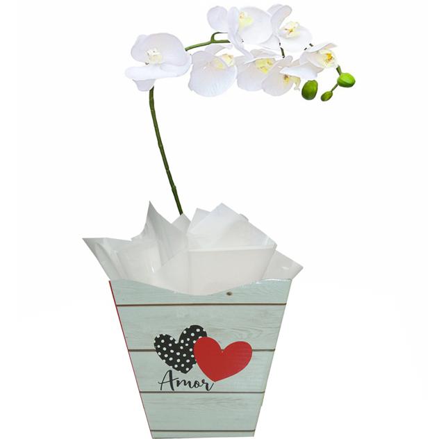 Orquídea Amo Você