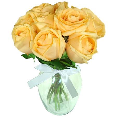 Rosas Champagne no vaso