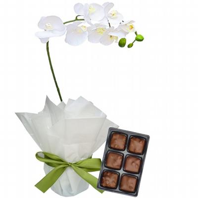 Desejos Orquídea com Chocolates