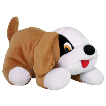 Cachorro Toty